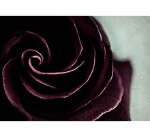 purple swirl Photographic Print