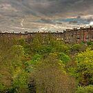 Town Houses of Edinburgh by Tom Gomez