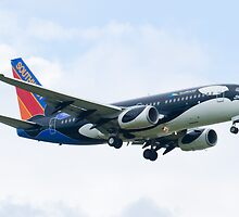 N715SW Southwest Airlines Boeing 737-7H4 Shamu Approach by Henry Plumley