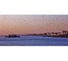 starlings at brighton seafront Photographic Print