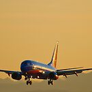 Southwest Airlines Boeing 737 Arrival by Henry Plumley