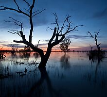 Menindee 2 by Malcolm Katon
