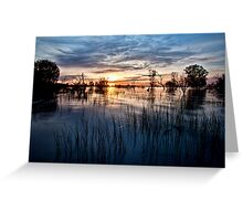 Menindee Magic Greeting Card
