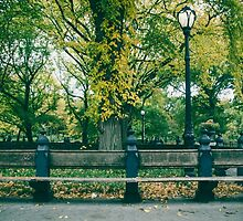 Seat in the Park by Dennis  of Legend Photography
