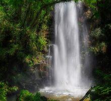Water Veil by Peter Hammer