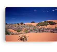 Perry Sandhills Canvas Print