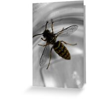 Busy busy bee ... Greeting Card