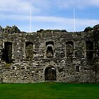 Beaumaris Castle by tunna