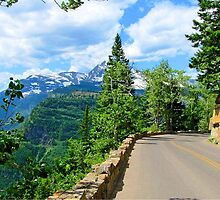 Going to the Sun Road, Glacier National Park by Diane Owens