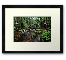 Protestor Falls, The Channon Framed Print
