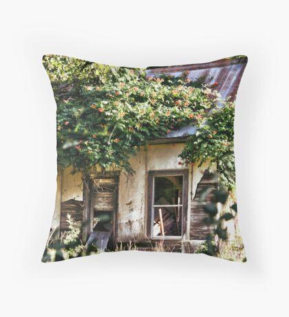 Neighbors Throw Pillow