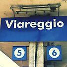 Viareggio by Ashli Amabile
