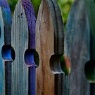 my garden fence by Loreto Bautista Jr.