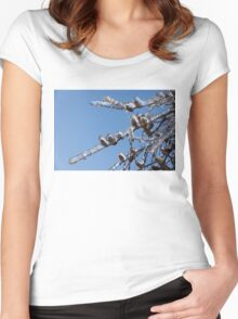 Mother Nature's Christmas Decorations – Glistening Twigs and Pine Cones Women's Fitted Scoop T-Shirt