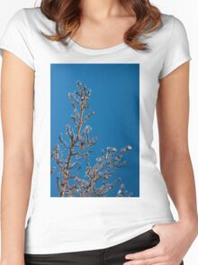Mother Nature Christmas Decorations - Gleaming Icy Baubles in Blue Women's Fitted Scoop T-Shirt