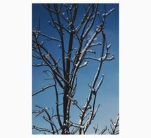 Mother Nature's Christmas Decorations - Icy Twig Jewels Kids Clothes