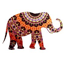 Spicy Warm Elephant Photographic Print
