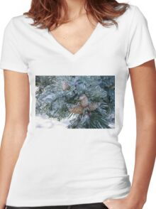 Mother Nature's Christmas Decorations - Pine Cones Women's Fitted V-Neck T-Shirt