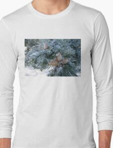 Mother Nature's Christmas Decorations - Pine Cones Long Sleeve T-Shirt