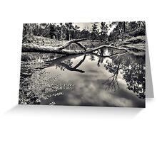 Crystal Pond Greeting Card