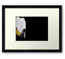 Smear Campaign II Framed Print