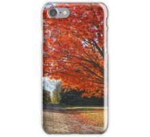 Michigan Spellbound iPhone Case/Skin