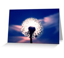 Seeds of Light Greeting Card