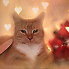 Annie Valentine by Shelly Harris