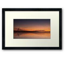 Swan Lake - Badgerys Creek, NSW Framed Print