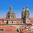 Salamanca New Cathedral by Dean Cunningham