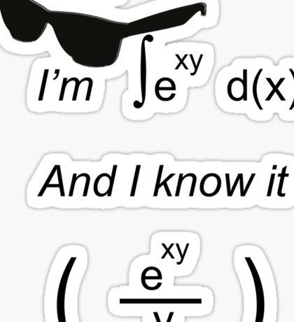 I'm integral(e^xy) and I know it Sticker