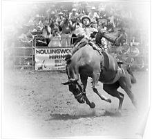 Taralga Rodeo bg 1 Poster