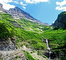 Scenes along Going to the Sun Road, Glacier National Park  by Diane Owens