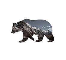 Bear on the Ice Photographic Print