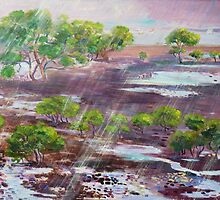 Mangroves in the rain ,Cleveland Bay Brisbane  by Virginia McGowan