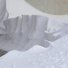 Snow sculpture by Margherita Bientinesi