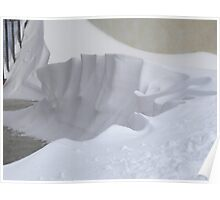 Snow sculpture Poster