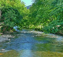 BeddGelert North Wales by AnnDixon