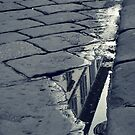Cobblestone Reflection by Ashli Amabile