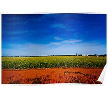 Summer Landscape Australia Poster