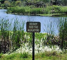 Do Not Feed the Alligators by Robyn Forbes