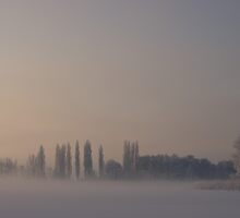 Cold Morning by Karen Havenaar
