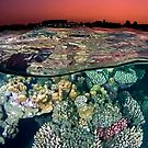 Sunset at the Red Sea Reef by Henry Jager
