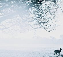 Lonesome Deer by oonat