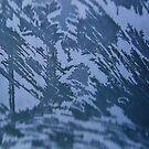 Nature's art on my window by Bluesrose