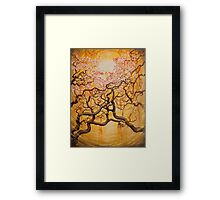 Sun and Sakura Framed Print