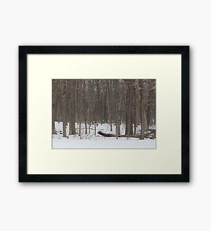 Johnston's Mound Framed Print
