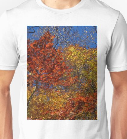 Ablaze with color Unisex T-Shirt