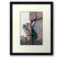 Cliff Boulders at Cochise Stronghold Framed Print