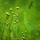 Think Green by Vicki Pelham